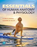 Essentials Human Anatomy & Physiology