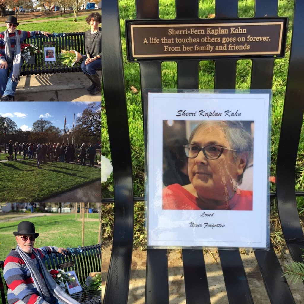 Photos of family and friends at Bench Dedication on the Town Green